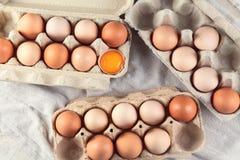 ask brutna fega äggägg inom yolk Top beskådar royaltyfria foton