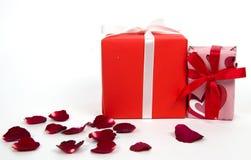 Ask för gåva två och rosa kronblad Utrymme för text Arkivbilder