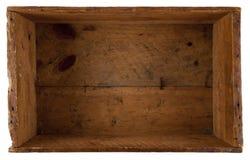 ask inom gammalt trä Arkivfoton