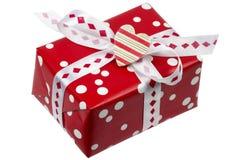ask little present Arkivbild