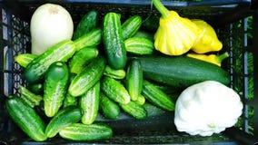 Ask med gurkan och zucchinin royaltyfri bild