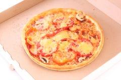 ask smaklig isolerad pizza Fotografering för Bildbyråer