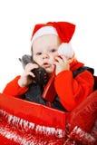 ask som kallar julspädbarntelefonen Royaltyfri Foto