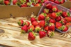 Askar av jordgubbar i bondemarknad Spjällådor mycket av fragaria Fotografering för Bildbyråer