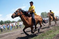 Askarovo by, republik av Bashkortostan, Ryssland, - Juni, 2, 2011 Hästkapplöpningar under byn Sabantui - folk festival för plog royaltyfria bilder