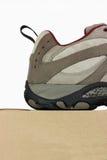 askclosen läker upp skon arkivbild