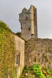 askeaton城堡废墟 免版税图库摄影