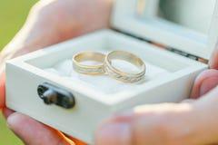 asken ringer bröllop Royaltyfria Bilder