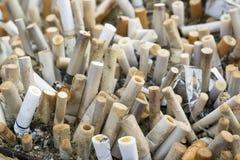 askfatet änd cigarettcigaretter full Royaltyfria Foton