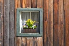 Askfönster med blomkrukan Royaltyfria Bilder