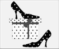 askgåvan shoes stilfullt Royaltyfri Bild
