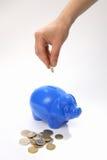 askpengar sparar Fotografering för Bildbyråer