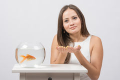 She asks to fulfill the desire to have a goldfish in an aquarium Stock Photo