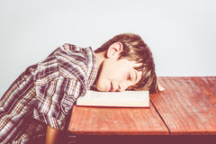 Asleep on the book Royalty Free Stock Photo