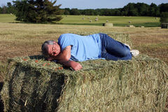Asleep on the hay Royalty Free Stock Photos