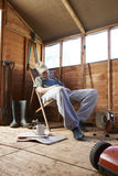 Asleep in shed. Man sitting in deckchair falling asleep in the shed while reading book stock photo