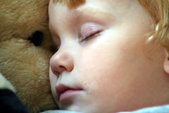 Asleep with a stuffed horse 2 Stock Images