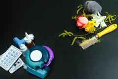 Asma del concetto di sollievo di allergia, allergeni stagionali - polline Immagini Stock Libere da Diritti