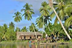 asmat在河的人部落村庄在新几内亚的密林 免版税库存图片