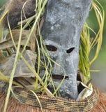 Asmat礼拜式的人面具 免版税库存图片