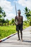 Asmat man with spear. Royalty Free Stock Images
