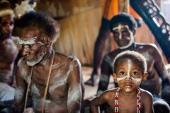 The Asmat Papua Welcoming ceremony. Stock Photography