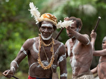 Asmat warriors Royalty Free Stock Images