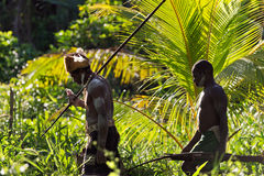 Asmats with spears. JOW VILLAGE, ASMAT DISTRICT, IRIAN JAYA PROVINCE, NEW GUINEA, INDONESIA - JUNE 28: Asmat warriors go on the jungle from a spears. June 28 Royalty Free Stock Image