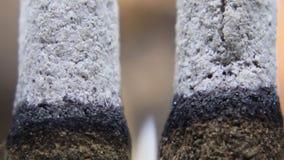 Asmr estremo bruciante di macro e della cenere di incenso video d archivio