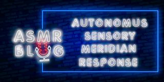 ASMR Blog Neon Vector Text. Autonomous sensory meridian response neon sign, design template, modern trend design, night. ASMR Neon Text Vector. Autonomous stock illustration