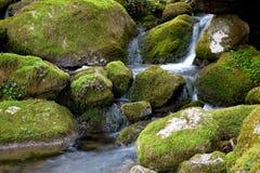 Ason river Royalty Free Stock Image