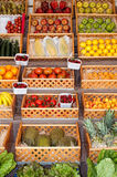 Asortowana owoc zdjęcia stock