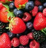 asortowane świeże owoce Obrazy Royalty Free