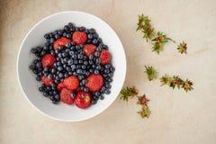 Asortowane czarne jagody i truskawki Obrazy Stock