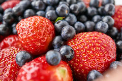 Asortowane czarne jagody i truskawki Obraz Stock