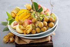 Asortowane tropikalne owoc na talerzu Obrazy Stock