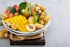 Asortowane tropikalne owoc na talerzu Zdjęcia Royalty Free