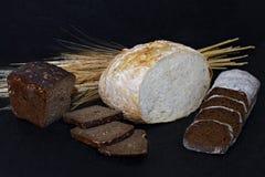 Asortowani różni rodzaje biel i czarny chleb na czarnym tle Obrazy Stock
