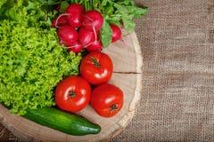 Asortowani warzywa z ogórkami, pomidorami, rzodkwiami i lettu, obraz royalty free