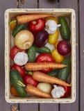 Asortyment świezi warzywa w drewnianym pudełku Zdjęcia Royalty Free