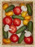 Asortyment świezi warzywa w drewnianym pudełku Fotografia Stock