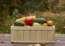 Asortyment świezi warzywa w drewnianym pudełku Zdjęcie Royalty Free