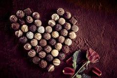 Asortyment małe czekolady obok wzrastał zdjęcia stock