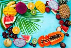 Asortyment tropikalne egzotyczne owoc niebieska t?a kosmos kopii Odg?rny widok zdjęcia royalty free