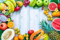 Asortyment tropikalne owoc z palmą opuszcza i egzotyczny kwiat obraz royalty free