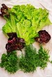 Asortyment warzywa i zieleni ziele sprzedażny fotografia stock