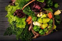 Asortyment warzywa i zieleni ziele sprzedażny obraz stock