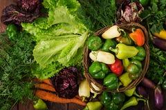 Asortyment warzywa i zieleni ziele sprzedażny zdjęcie stock