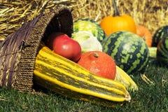 Asortyment ?wiezi warzywa arbuzy, banie i zucchini, pomidor, kukurudza, pieprz w starym ?ozinowym koszu na backgrou fotografia stock