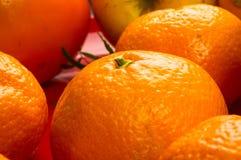 asortymentu egzota owoc Zdjęcie Stock